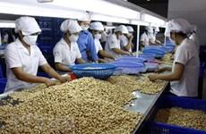 Vietnam espera alcanzar 62 mil millones de dólares por exportación de productos agrosilvícolas y acuícolas en 2030