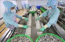 Estados Unidos levanta impuesto antidumping al camarón de empresa vietnamita