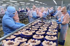 TLC con la Unión Europea impulsa exportaciones agrícolas de Vietnam a los Países Bajos