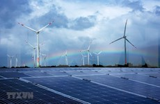 Revisan cuestiones relacionadas con el desarrollo de energía solar en Vietnam