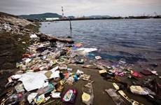Indonesia y Japón fortalecen cooperación para abordar problemas ambientales