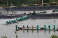 En alza producción acuícola de la provincia vietnamita de Tien Giang