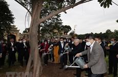 Lanzan movimiento de plantación de árboles en Hanoi