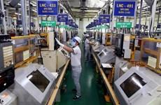Perspectivas económicas de Vietnam: oportunidades en medio de crisis