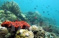 Vietnam acelera la investigación de recursos naturales y medio marino