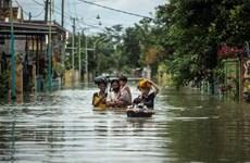 ASEAN y Rusia firman memorando de entendimiento sobre gestión de desastres naturales