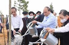 Primer ministro de Vietnam lanza campaña de plantación de árboles en ocasión del Tet
