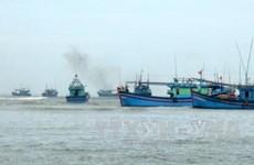 Provincia vietnamita intensifica lucha contra pesca ilegal