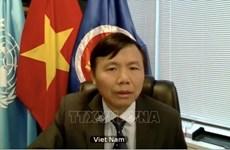Vietnam insta a promover la Carta de la ONU para mantener la paz y seguridad internacional