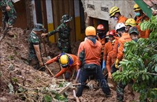 Indonesia: cinco muertos y 70 desaparecidos por alud en una mina de oro