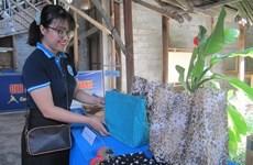 """""""Residuos cero"""" podría crear más de 18 mil nuevos empleos para Ciudad Ho Chi Minh"""