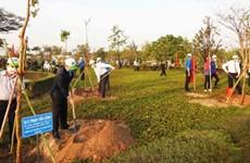 Lanzan en provincia vietnamita movimiento de siembra de árboles