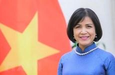 Vietnam participa en las negociaciones de OMC sobre subsidios a pesca