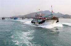 Vietnam trabaja por levantar la tarjeta amarilla contra la pesca