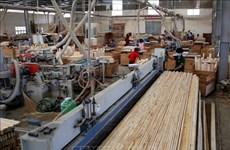 Provincia vietnamita de Binh Duong lidera las exportaciones madereras del país
