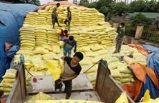 Vietnam decide imponer medidas de autodefensa a fertilizantes importados