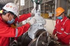 PetroVietnam garantiza sus operaciones en primeros dos meses del año