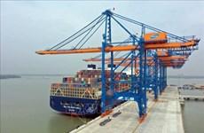 Fuerte aumento de carga de contenedores a través de puertos de Ba Ria-Vung Tau