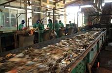 Vietnam y Japón intercambian experiencias en tratamiento de residuos