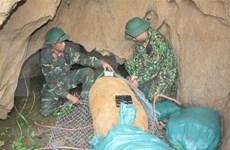 Desactivan en Vietnam bomba de 500 kilogramos remanente de guerra
