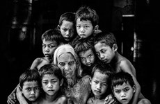 Fotógrafo vietnamita gana dos medallas de oro en concurso internacional