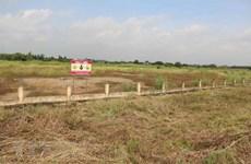 EE.UU. anuncia contratista principal para proyecto de tratamiento de dioxinas en aeropuerto de Bien Hoa