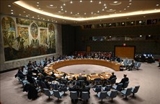 Vietnam apoya el establecimiento de nuevo gobierno en Líbano