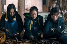 Proyectarán en Japón película sobre trabajadoras vietnamitas