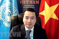 Vietnam apoya solución integral para crisis libia