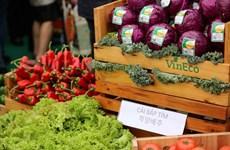 Reduce índice de precios al consumidor de Hanoi en marzo