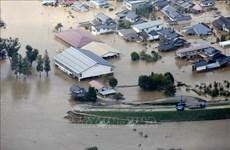Respaldan a provincia vietnamita en respuesta a desastres naturales
