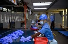 ASEAN y Corea del Sur refuerzan cooperación en trabajo y empleo