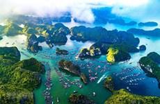 Vietnam y otros países por fortalecer lucha contra contaminación del océano