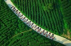 Provincia vietnamita de Cao Bang, con gran potencialidad de turismo agrícola