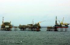 Corporación petrolera de Vietnam sobrecumple contribución al presupuesto estatal en 41 por ciento