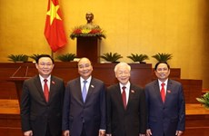 Medios egipcios aprecian la nueva dirigencia de Vietnam