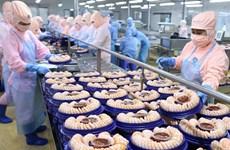 En alza exportación de camarones de delta de río Mekong en Vietnam