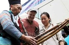 Atractivo festival del instrumento musical tradicional de los Mong en la meseta rocosa de Dong Van