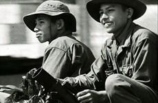 Proyectarán películas en saludo a efemérides de Vietnam