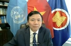 Vietnam aboga por solución integral para situación en Kosovo