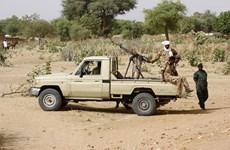 Participa Vietnam en diálogo virtual del Consejo de Seguridad de la ONU sobre Darfur