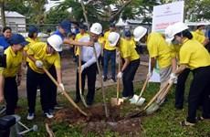 Lanzan en provincia vietnamita programa de plantación de árboles
