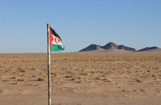 Vietnam apoya solución pacífica en el Sahara Occidental