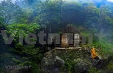 Exposición promueve budismo en Vietnam