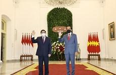 Primer ministro vietnamita se reúne con el presidente indonesio