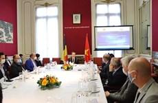 Empresas de Bélgica buscar aumentar inversiones en Vietnam