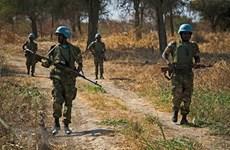 Vietnam destaca esfuerzos internacionales por apoyar solución pacífica en Abyei