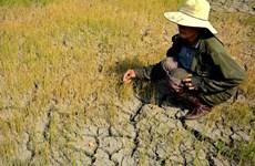 Promueven igualdad de género en políticas de respuesta al cambio climático en Vietnam