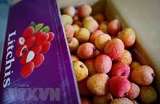 Amazon ayuda a firmas vietnamitas a promover sus productos en mercados globales