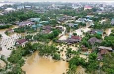 Pronostican situación estable de tifones en Vietnam este año